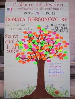 2013.10.25 albero 007